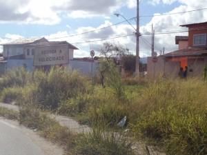 Morada do Rio: mato alto impede a passagem de pedestres e quase tampa a placa de sinalização